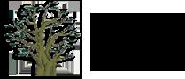 logo-arbores-lenda-c